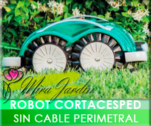 Sin Cable Perimetral