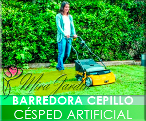 Barredora Césped Artificial